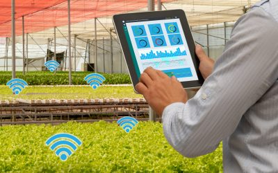 How IoT technology improves food safety & restaurant efficiency